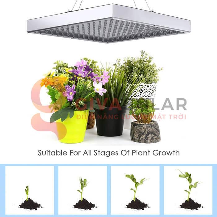 Đèn led trồng cây 14W 1