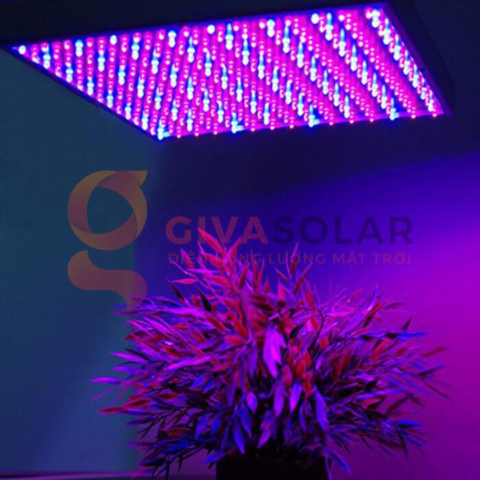 Đèn led trồng cây 14W 2