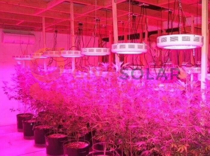 Đèn led trồng cây UFO 50W 8