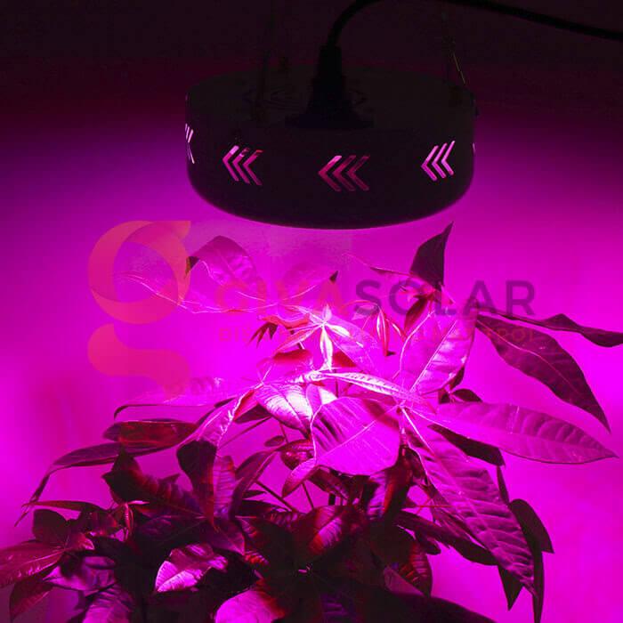 Đèn led trồng cây UFO 50W 9
