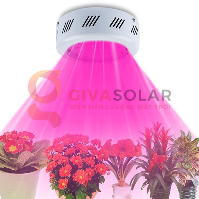 Đèn led trồng cây UFO 60 x 3W 2