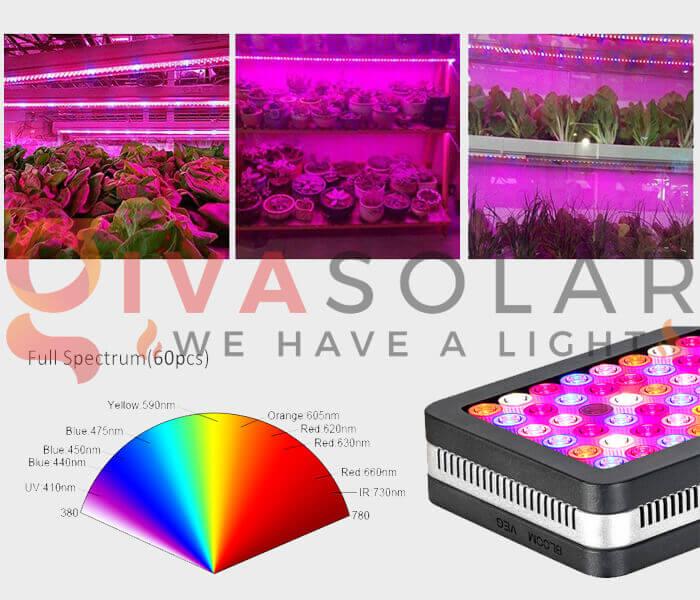 Cách sử dụng đèn LED trồng rau 3