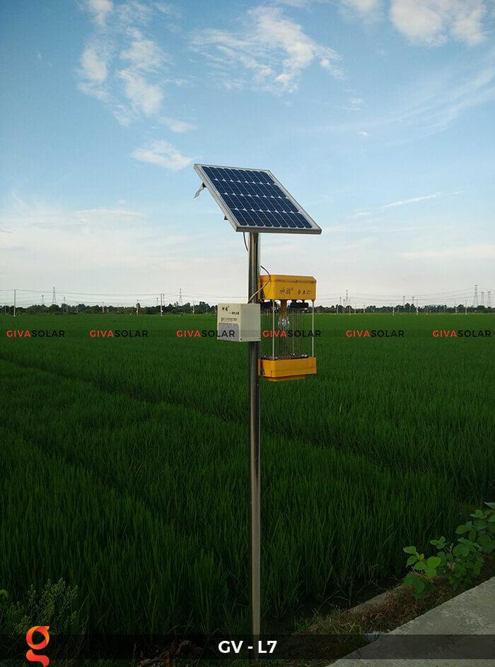 Đèn bắt côn trùng năng lượng mặt trời GV-MK-L7 10