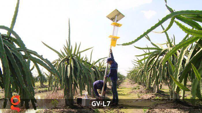 Đèn bắt côn trùng năng lượng mặt trời GV-MK-L7 14