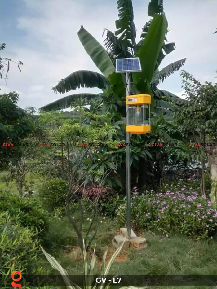 Đèn bắt côn trùng năng lượng mặt trời GV-MK-L7 2