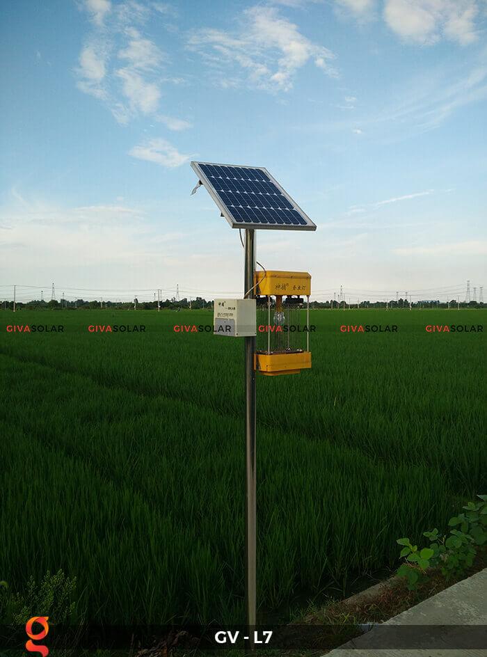 Đèn bắt côn trùng năng lượng mặt trời GV-MK-L7 3