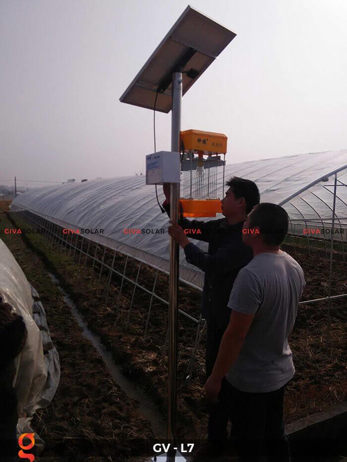 Đèn bắt côn trùng năng lượng mặt trời GV-MK-L7 6