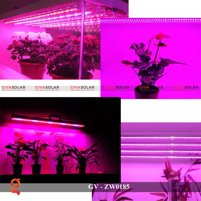 Đèn Led quang hợp ống tuýp GV-ZW0185 10