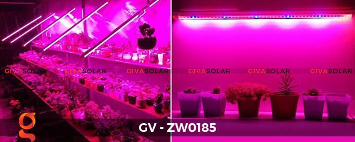 Đèn Led quang hợp ống tuýp GV-ZW0185 14