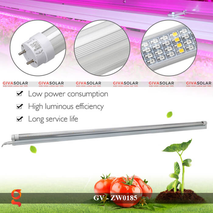Đèn Led quang hợp ống tuýp GV-ZW0185 4