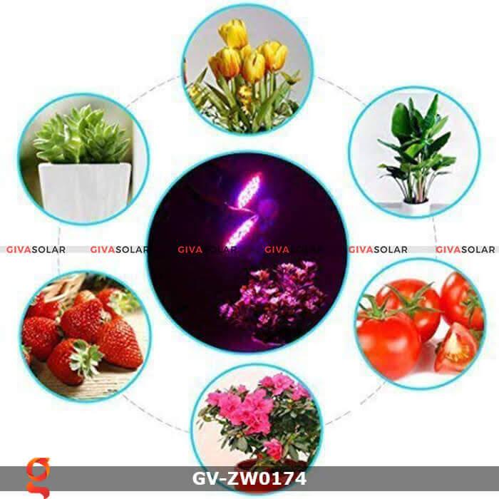 Đèn led quang hợp trồng cây GV-ZW0174 60w 2
