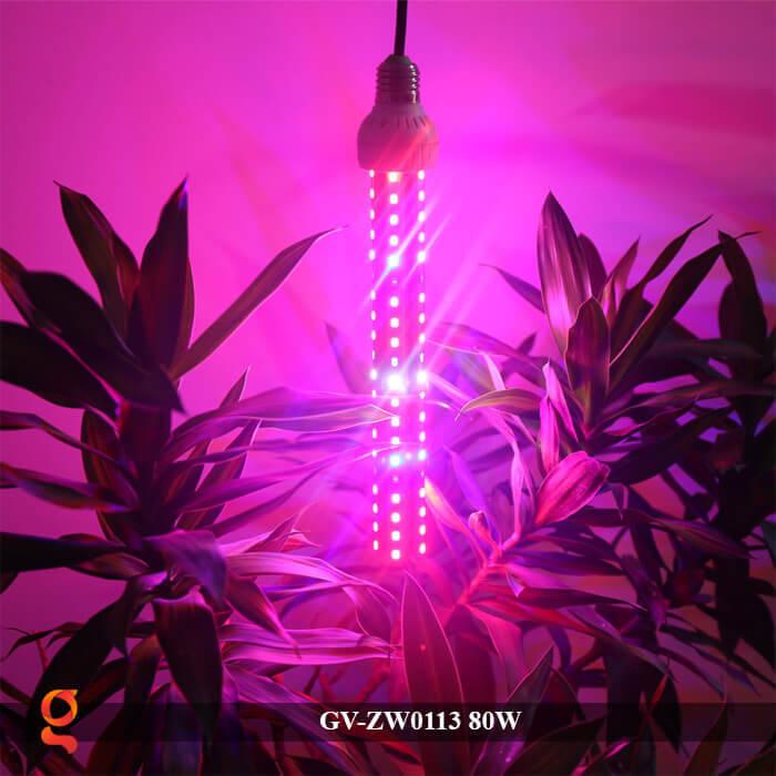 Đèn led trồng cây loại treo GV-ZW0113-1 80W 8