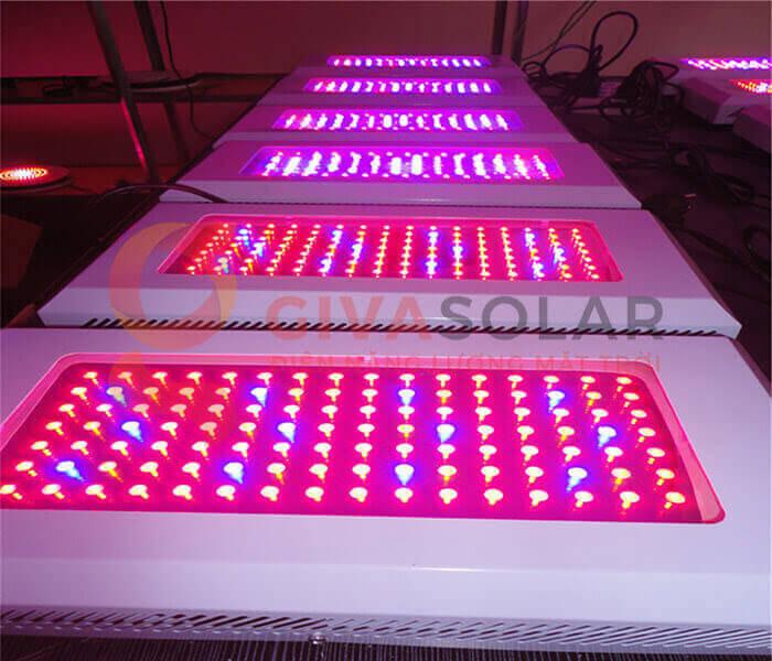 Mua đèn LED quang hợp trồng cây ở đâu?