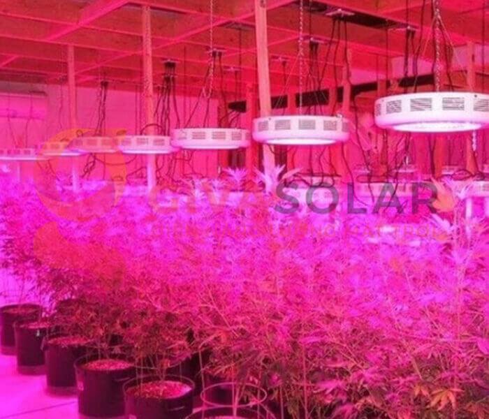 Tiết kiệm không gian khi trồng đèn LED trồng cây