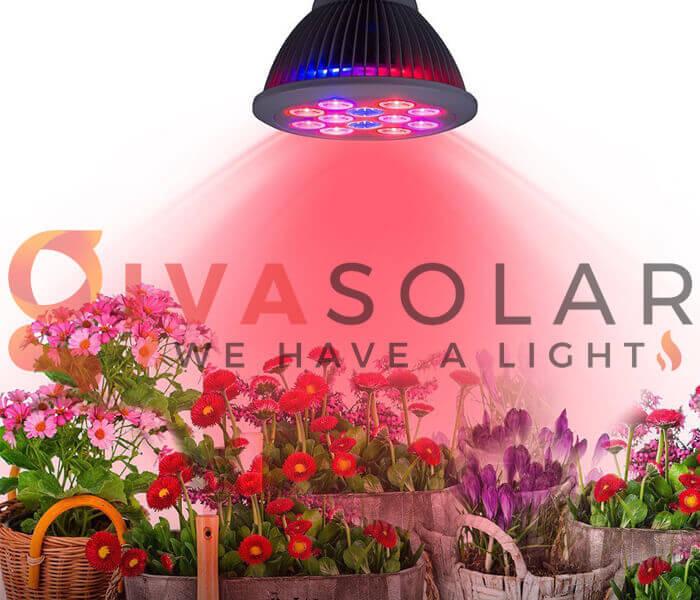 Đèn LED trồng phát ra ánh sáng an toàn