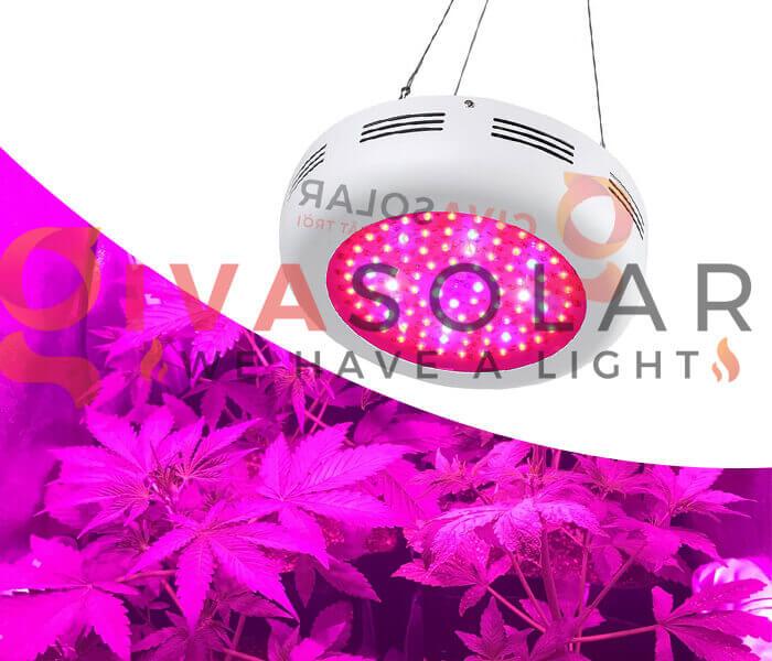 Mua đèn LED trồng cây tại GivaSolar