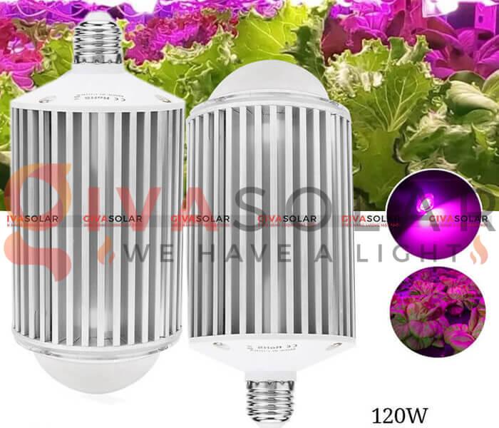 Những quan niệm sai lầm về đèn LED nông nghiệp 10