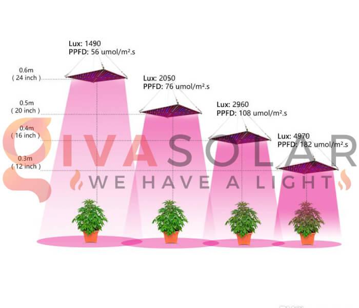 Những quan niệm sai lầm về đèn LED nông nghiệp 11