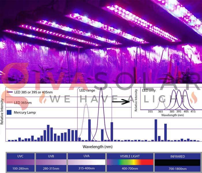 Những quan niệm sai lầm về đèn LED nông nghiệp 14