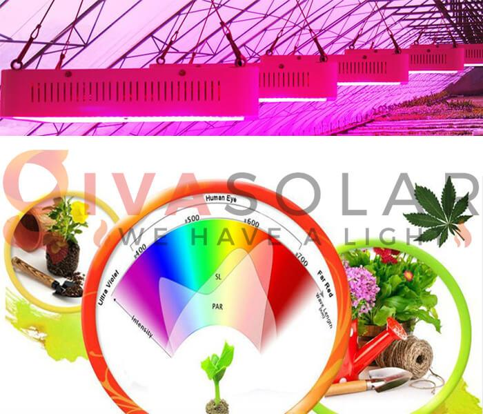Những quan niệm sai lầm về đèn LED nông nghiệp 15