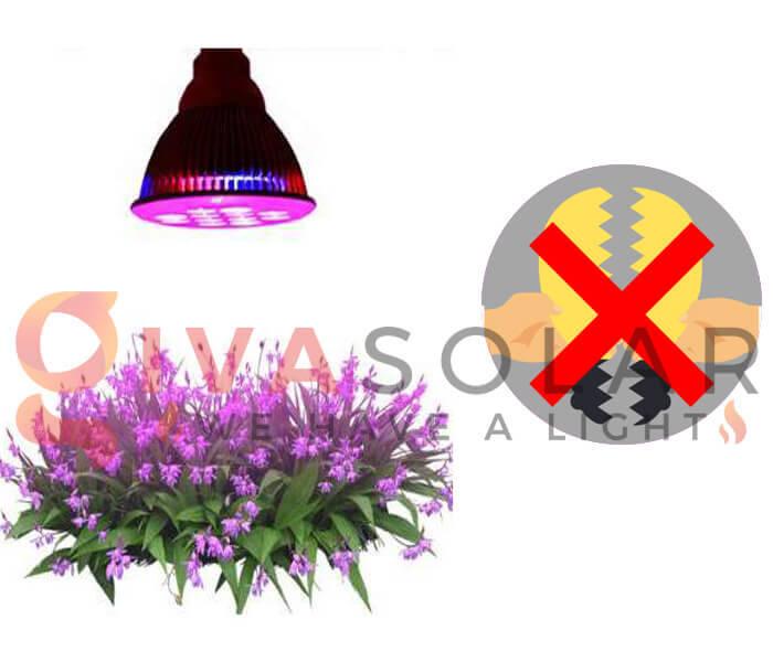 Những quan niệm sai lầm về đèn LED nông nghiệp 4