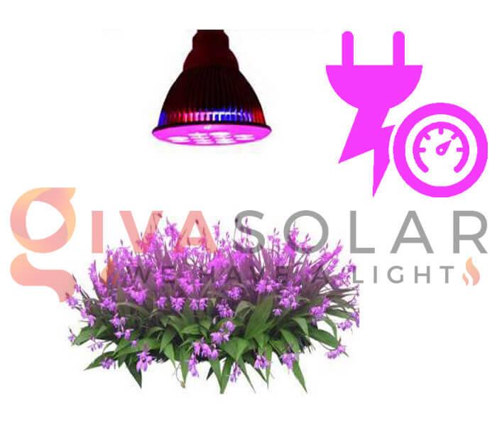 Những quan niệm sai lầm về đèn LED nông nghiệp 5