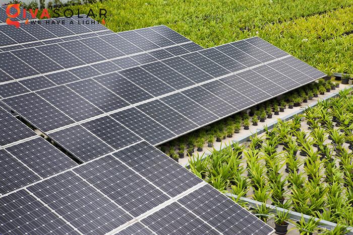 Tấm Pin năng lượng mặt trời có giá bao nhiêu 1
