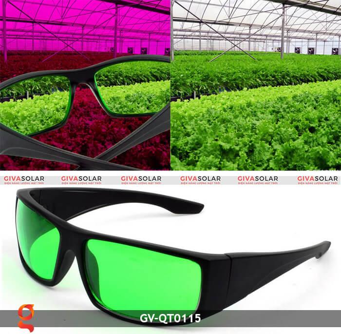 Mắt kính bảo vệ mắt GV-QT0115 1