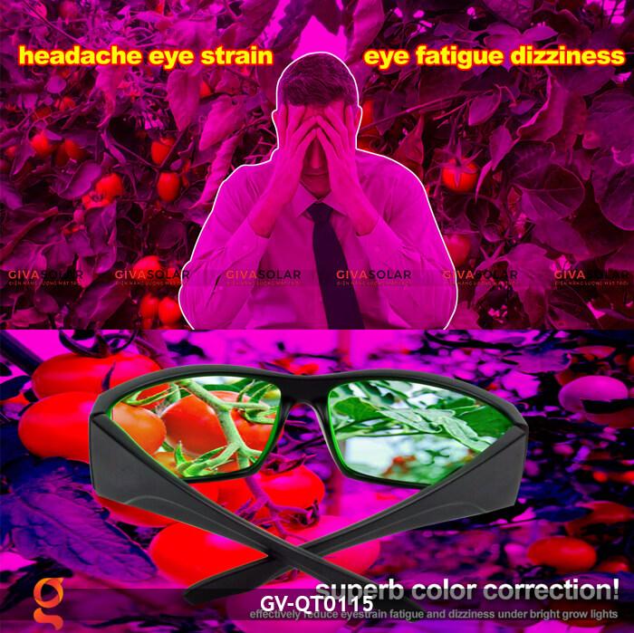 Mắt kính bảo vệ mắt GV-QT0115 10