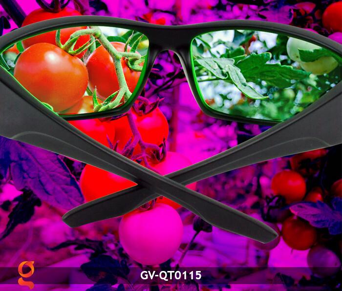Mắt kính bảo vệ mắt GV-QT0115 11
