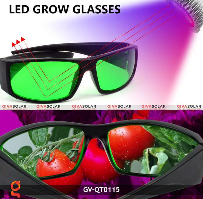 Mắt kính bảo vệ mắt GV-QT0115 2