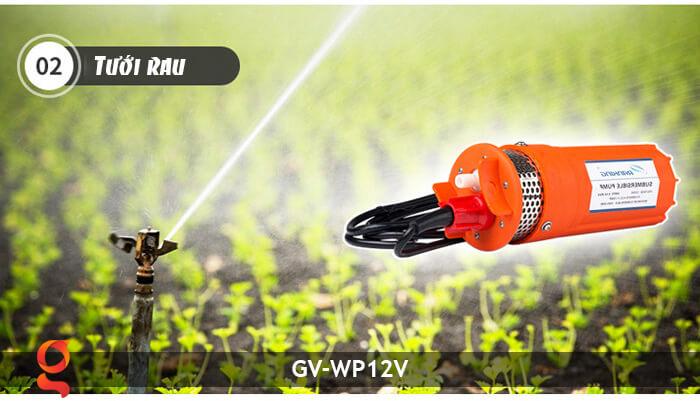 Máy bơm nước năng lượng mặt trời GV-WP12V 17