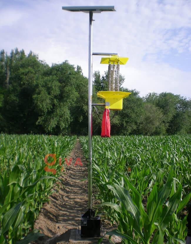 Tìm hiểu về đèn bắt côn trùng năng lượng mặt trời 4