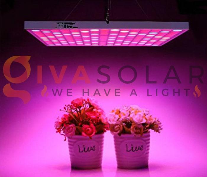 Hướng dẫn sử dụng đèn LED trồng cây 1
