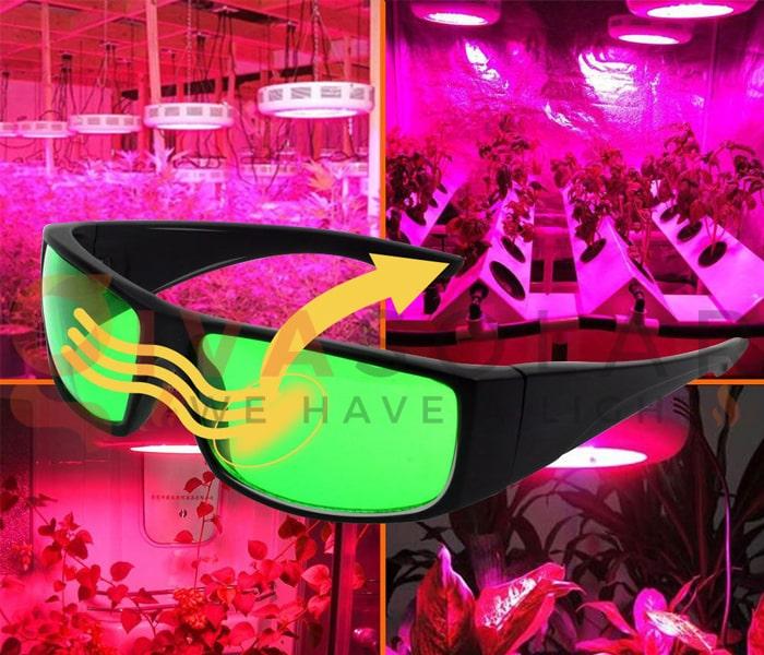 Hướng dẫn sử dụng đèn LED trồng cây 12