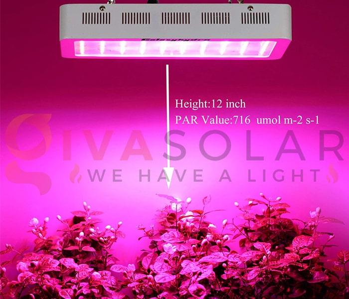 Hướng dẫn sử dụng đèn LED trồng cây 2
