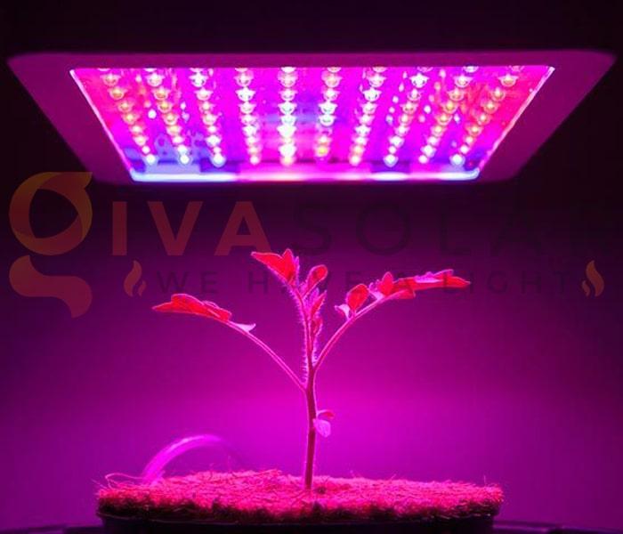 Hướng dẫn sử dụng đèn LED trồng cây 3