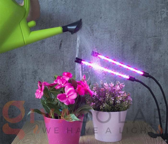 Hướng dẫn sử dụng đèn LED trồng cây 6