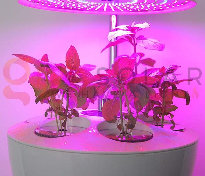Hướng dẫn sử dụng đèn LED trồng cây 7