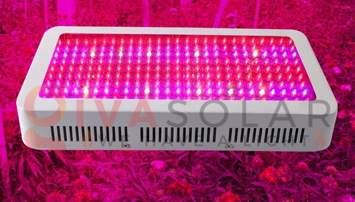 Hướng dẫn sử dụng đèn LED trồng cây