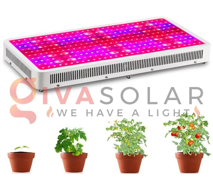 Những thông tin cần biết về đèn LED trồng cây 3