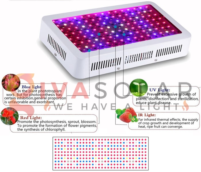 Những thông tin cần biết về đèn LED trồng cây 5