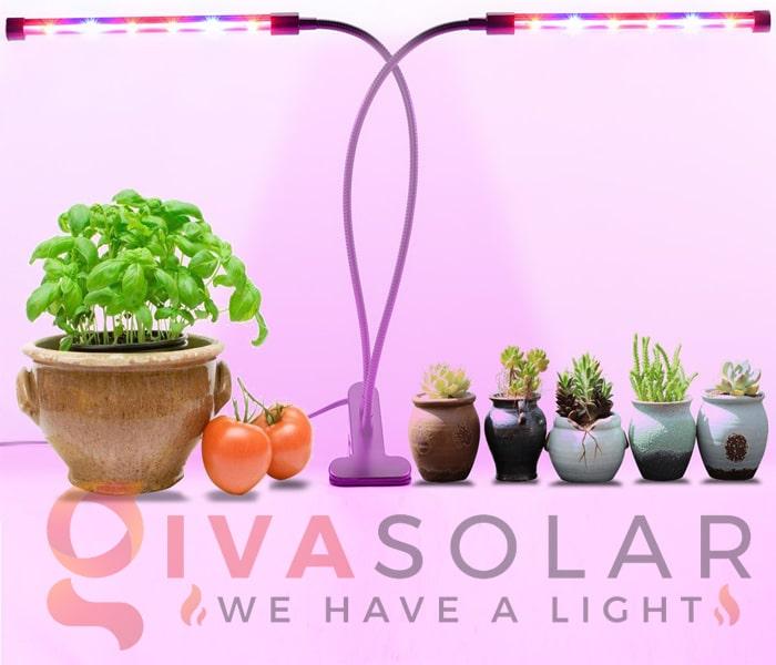 Những thông tin cần biết về đèn LED trồng cây 7