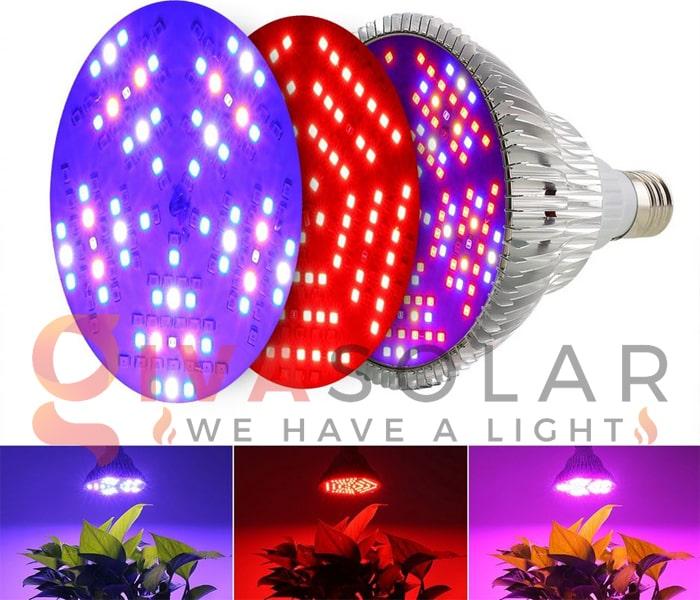 Những thông tin cần biết về đèn LED trồng cây 8