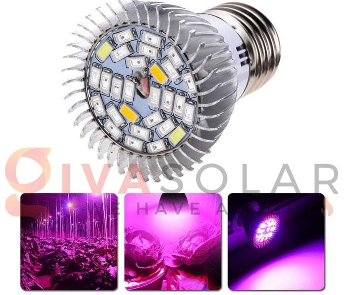 Trồng cây bằng đèn LED- FAQ 2