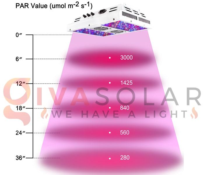 Trồng cây bằng đèn LED- FAQ 6
