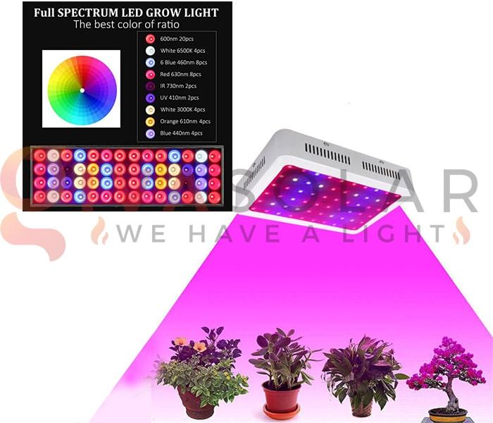 Trồng cây bằng đèn LED- FAQ 8