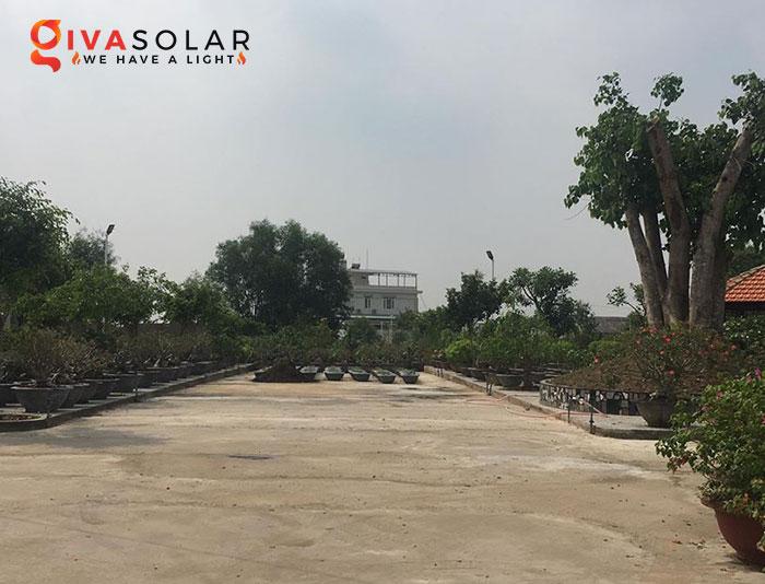 Dự án lắp đặt hệ thống đèn đường Solar ở Chùa Đồng Nai 2