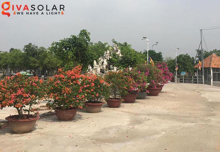 Dự án lắp đặt hệ thống đèn đường Solar ở Chùa Đồng Nai 3