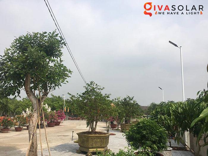 Dự án lắp đặt hệ thống đèn đường Solar ở Chùa Đồng Nai 4